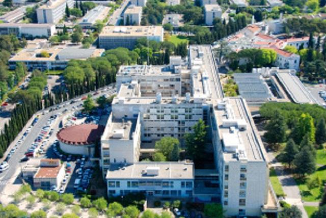 Image: Montpellier University Hospital