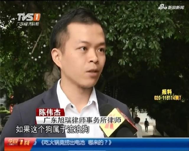 Chen Weijie China lawyer