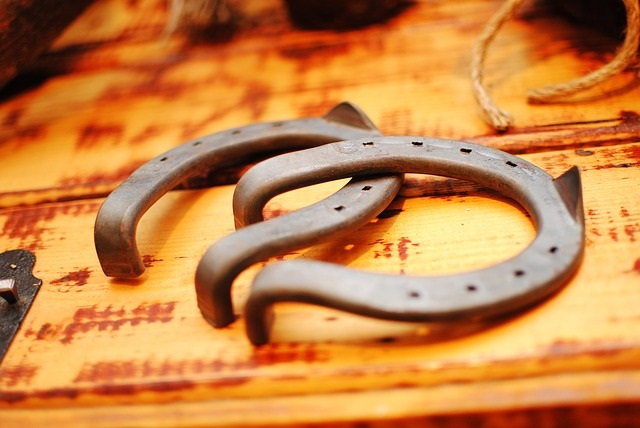 Lucky horseshoes