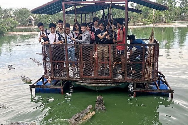 Chinese tourists feed crocodiles in Thailand
