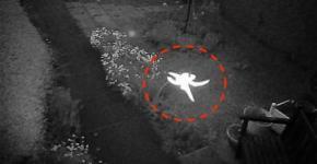 Fairy photo London Security Camera