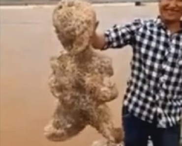 Weird Humanoid Figure Found In Chinese Waters
