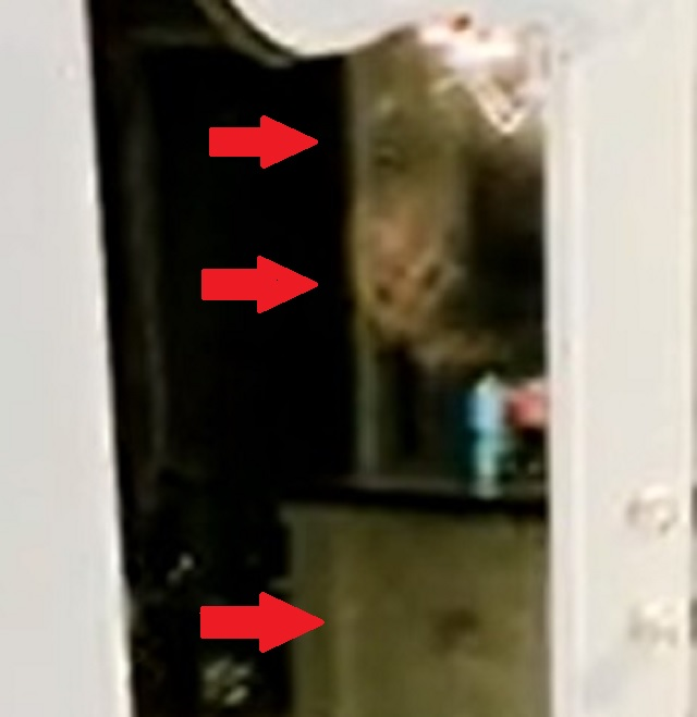 alien faces in door kitchen at night with little girl