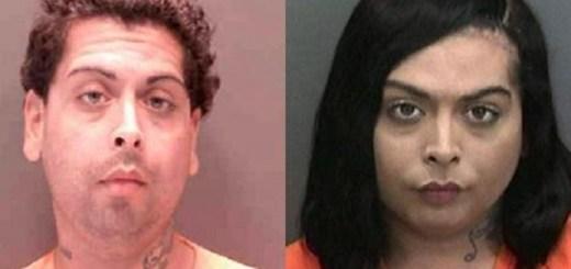 Florida Man Steals Credit Card Buys French Bulldog As Woman