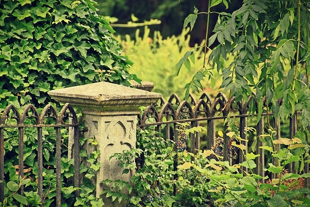 Old Abandoned Cemetery Louisana