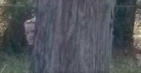 Little Ghostly Girl Peeks Out From Behind Tree
