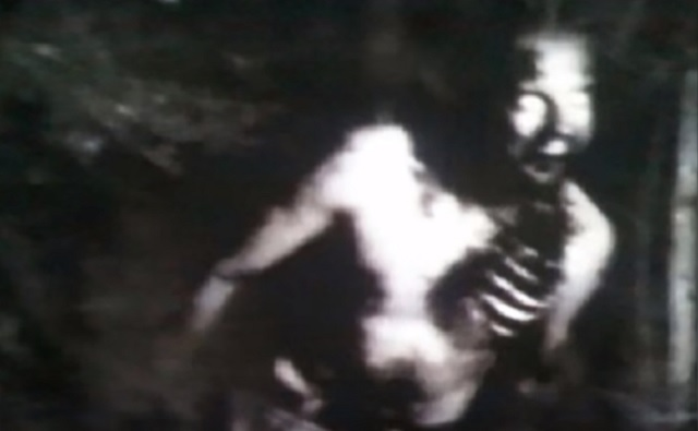 Flesh eating zombies invade Virginia