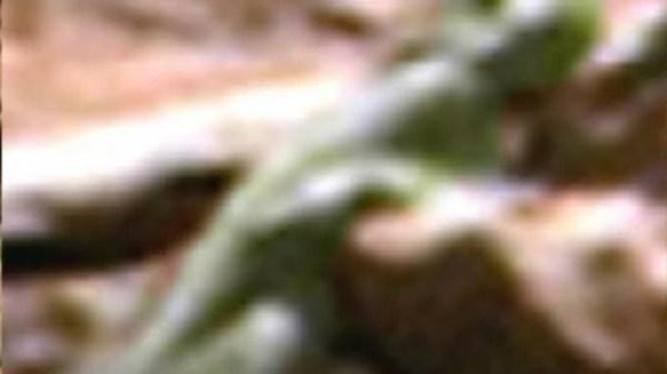 Mars alien recorded on camera
