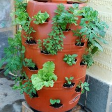 vertical-garden-barrel