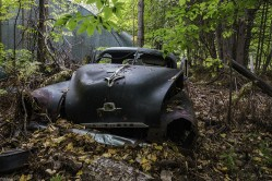 An old car found left in the forest in a rural ontario town