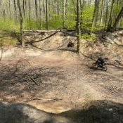 Illegales Mountainbiking im Königsdorfer Wald