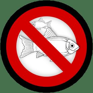 Seaweed and Allergies