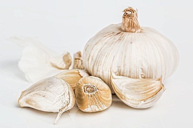 Garlic Aroma In Breast Milk