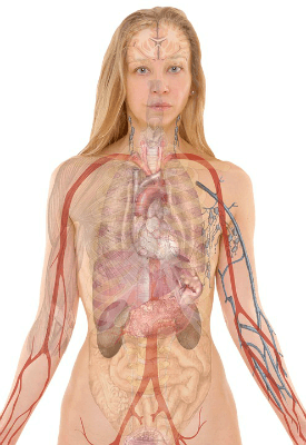 Melanoma Spreads To Other Organs (1)