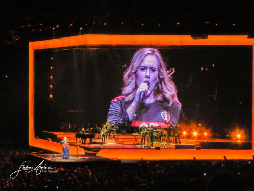 Adele supports the Belgian football team during his concert and dons the jersey Devils at number 25 with his name at the Sportpaleis in Antwerp, Belgium. Antwerp, June 13, 2016, Belgium