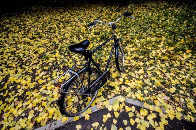 fiets in gele bladeren
