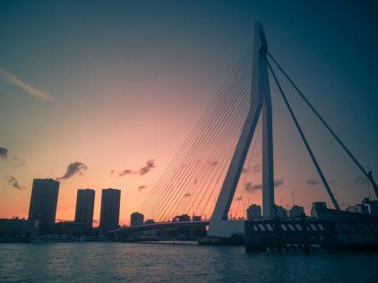 Rotterdam-Social-6