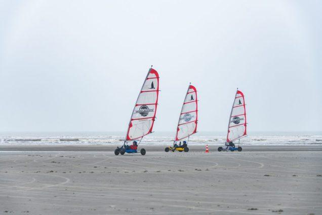 Wad sea-43