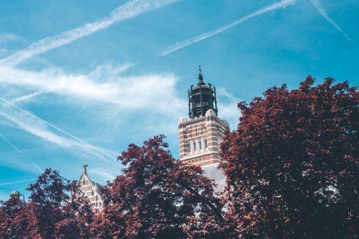 Scheldeland - Web-8