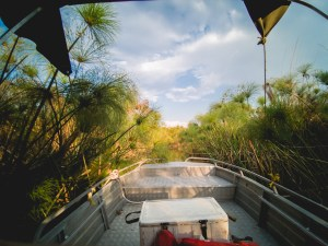 Okavango Delta boatride