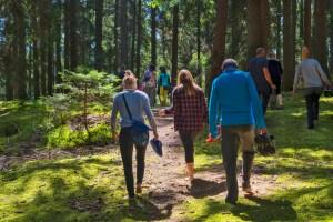 feel the soil during forest bathing