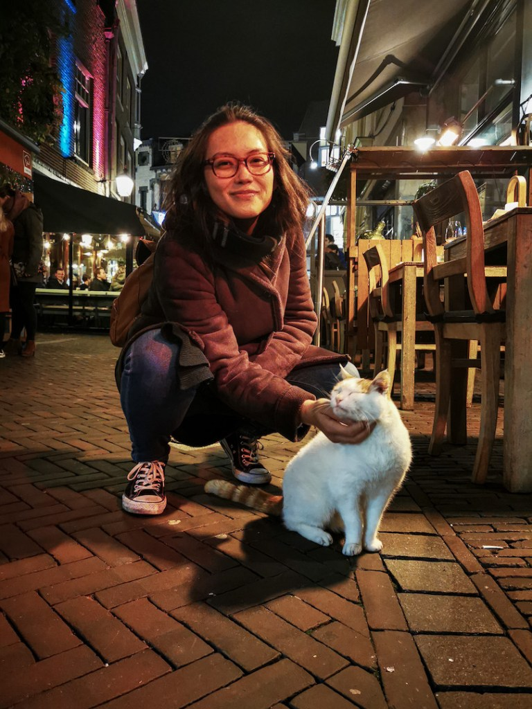 Petting kitties in Utrecht