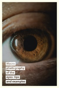 Macro photography of the eyes tips and examples