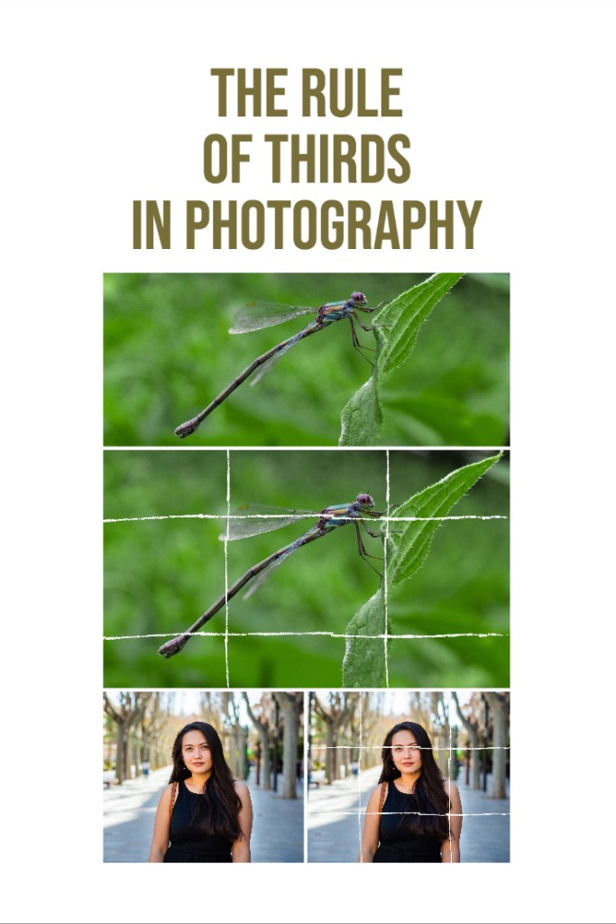 The Rule of Thirds in Photography