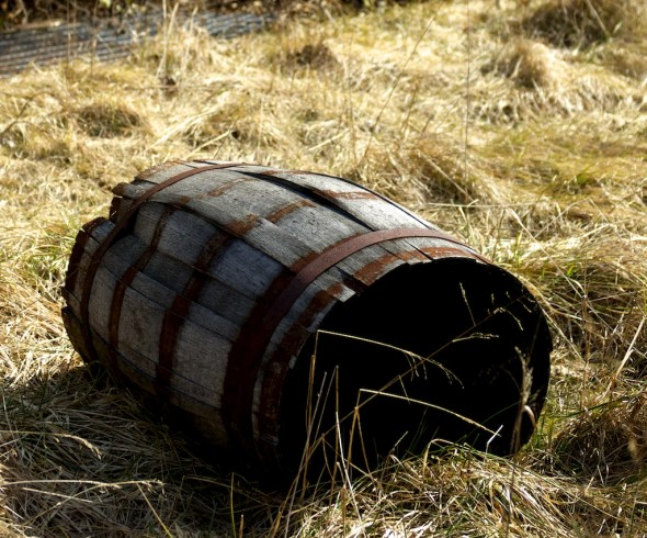 The Old Taylor Distillery once stored thousands of barrels. Today, the only barrel left is without whiskey or heads and has weeds growing through it.