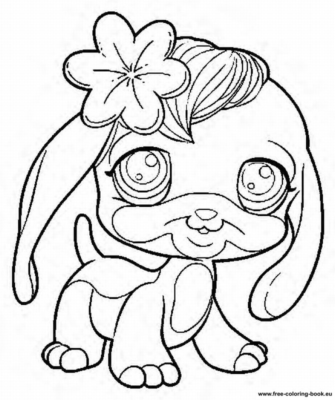 pet high Colouring Pages