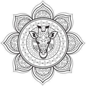 Difficult Mandalas For Adults 100 Mandalas Zen Anti Stress