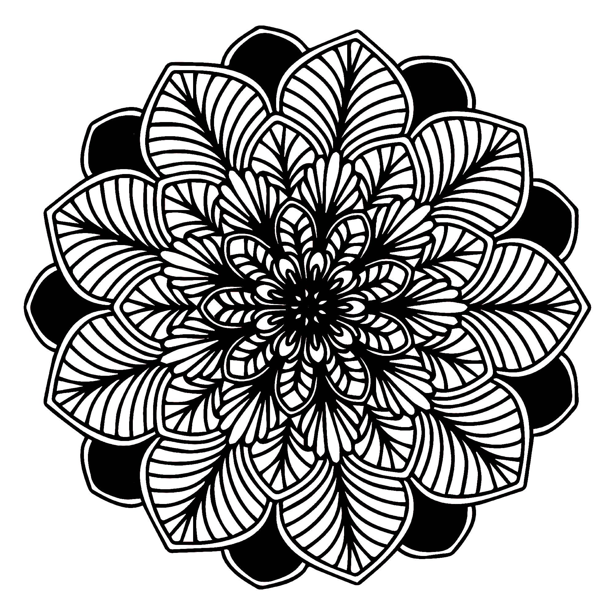 black white leaves mandala