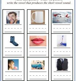 Short Vowel Sounds - Mixed Vowel Worksheets [ 2200 x 1600 Pixel ]