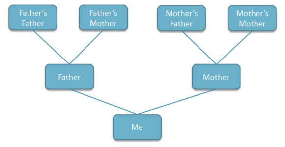 how do i draw a family tree diagram house lighting wiring to create in powerpoint using shapes