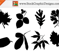 Leaf Silhouettes Free Vector Images