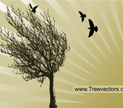 Vector Tree Silhouette with Birds