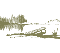 Serene Lake & Dock Vector