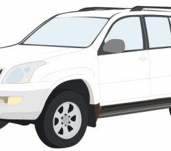 Toyota Prado Vector