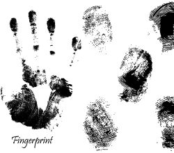 Fingerprint Vector Art Free