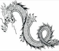 Japanese Dragon Free Vector Art