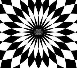 Op Art Flower Vector