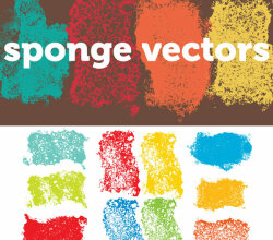 Sponge Texture Free Vector Resource