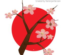 Vector Japanese Cherry Blossom