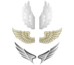 Wings Illustrator