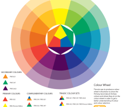 Colour Wheel Vector Illustration