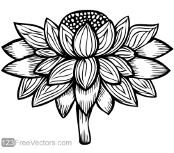Vector Flower Image