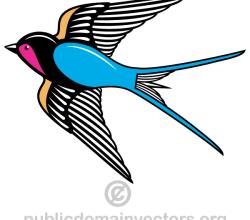 Flying Swallow Bird Vector Image