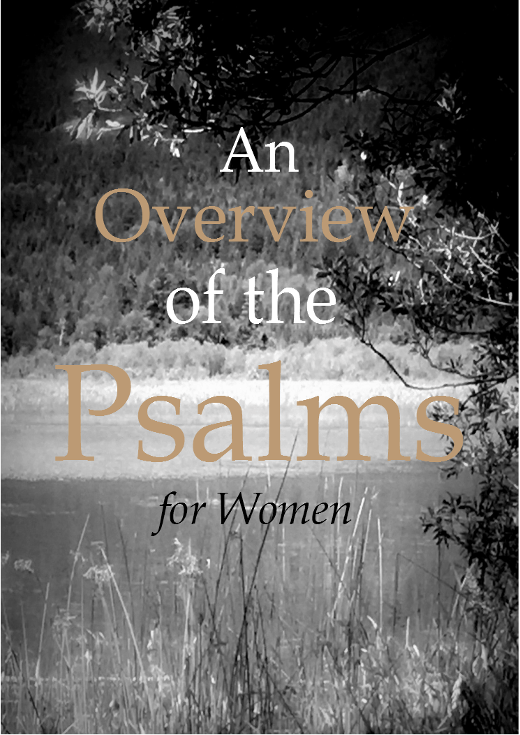 An Overview Of The Psalms Bible Study For Women