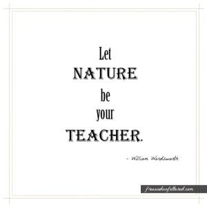 nature-teacher-wordsworth