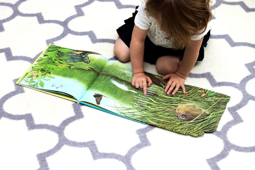 Henry Cole's On the Way to the Beach is another great Montessori-friendly seek-and-find book for young children that also encourages them to observe their natural surroundings so they may discover all the creatures that co-exist with us on this beautiful planet.